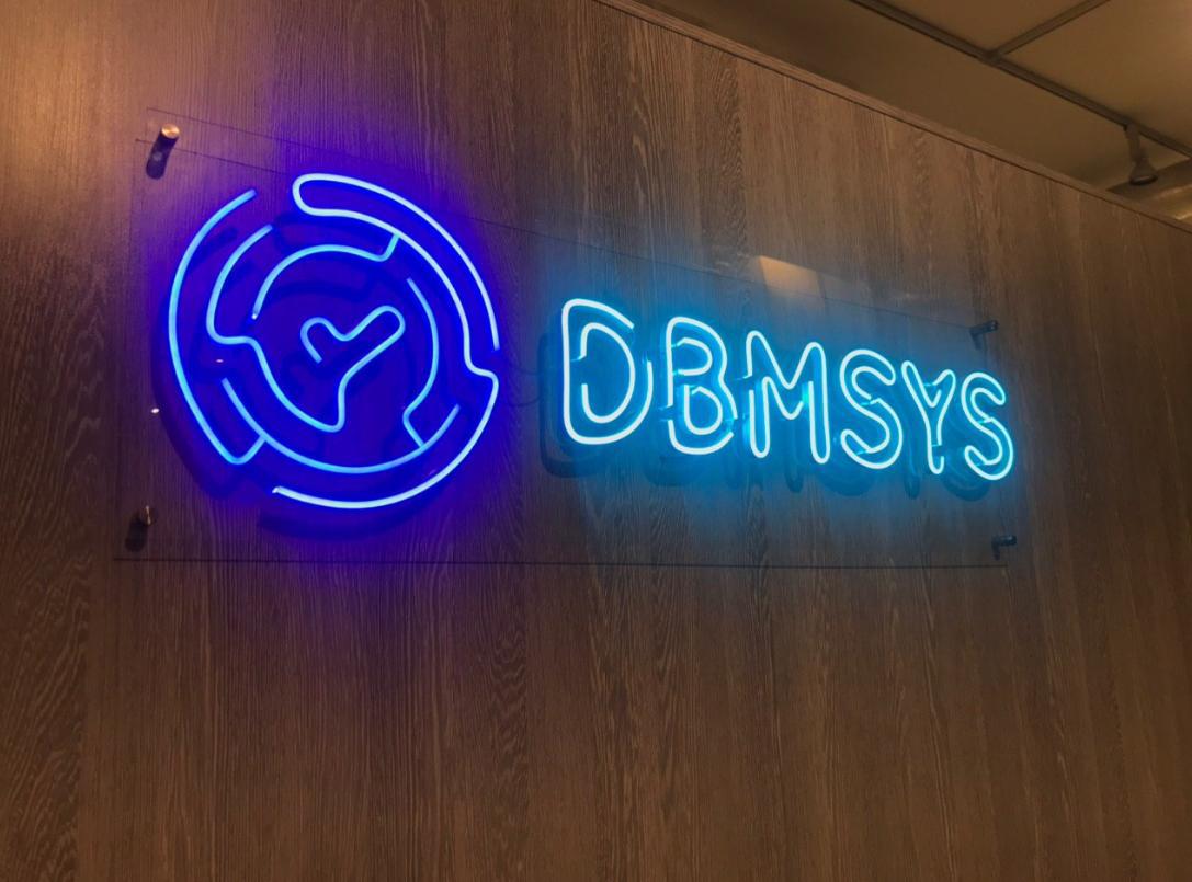 DBMSYS-neon